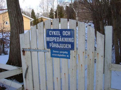 10_cykel.jpg