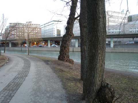 11_stockholmvaknar.jpg