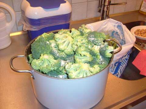 1_broccoli.jpg