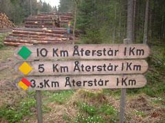 1km.jpg