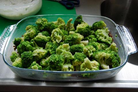 2_nastavarvbroccoli.jpg
