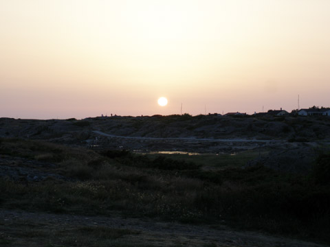 2_solenpavagner.jpg