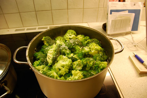 4_broccolikokas.jpg