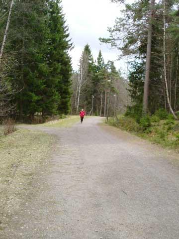 4_jogg.jpg