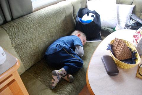 6_sover.jpg