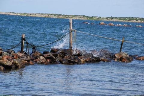 7_fiskehamnen.jpg