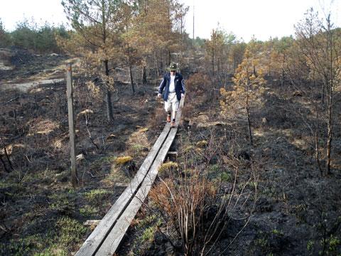 9_branden.jpg